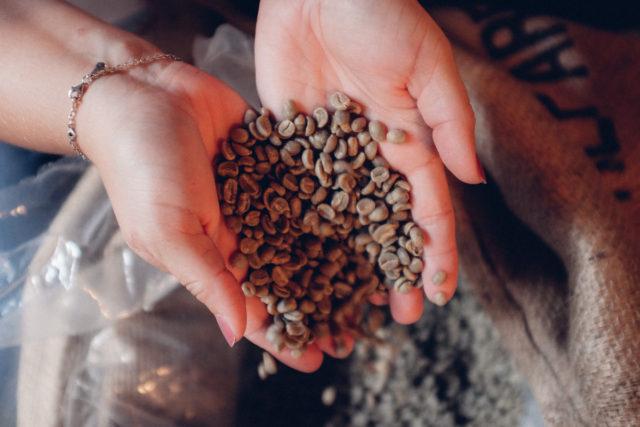 kaffeemanufaktur-bohnen